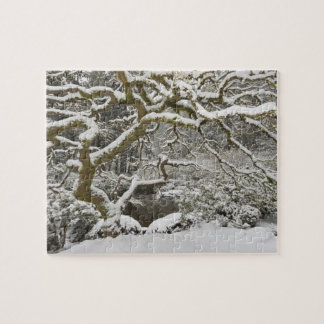 Snow-covered Japanese maple 2 Jigsaw Puzzles
