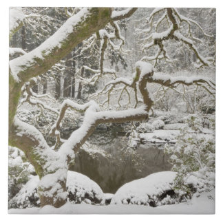 Snow-covered Japanese maple Large Square Tile