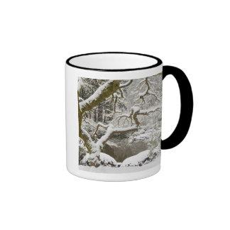 Snow-covered Japanese maple Coffee Mugs