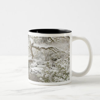Snow-covered Japanese maple Coffee Mugs