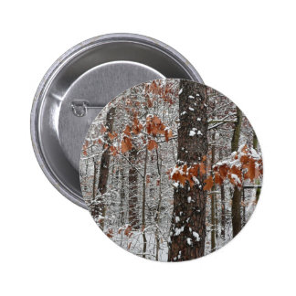 Snow Covered Oak Trees Button