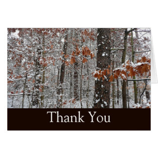 Snow Covered Oak Trees Thank You Card