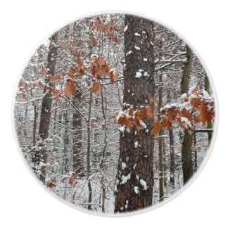 Snow Covered Oak Trees Winter Nature Photography Ceramic Knob