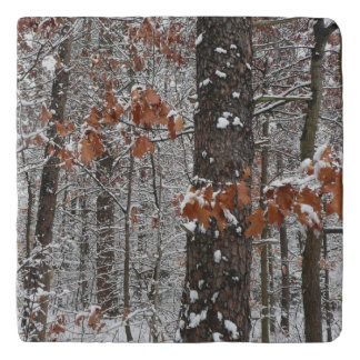 Snow Covered Oak Trees Winter Nature Photography Trivet