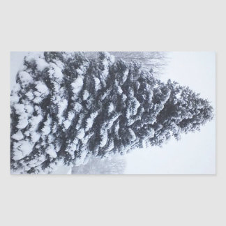 Snow Covered Pine Tree Glossy Stickers Set