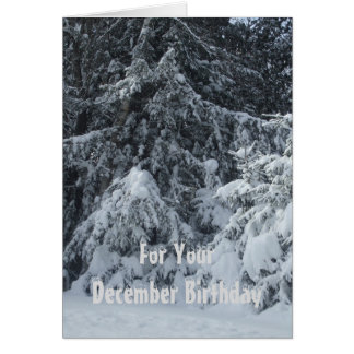 Snow Covered Pine trees Card