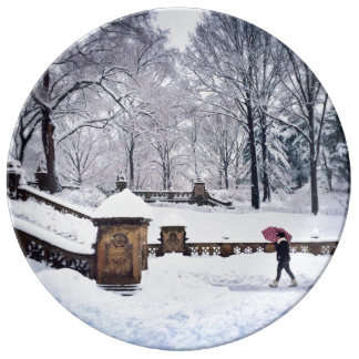 Snow-Covered Stairs In Central Park Porcelain Plates