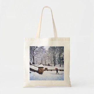 Snow-Covered Stairs In Central Park Tote Bag