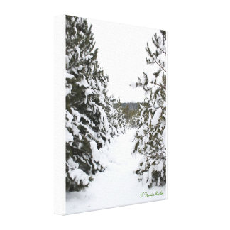 Snow covered trails gallery wrap canvas