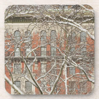 Snow Covered Tree Beverage Coaster