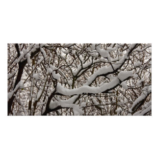 Snow covered tree branches photo card template