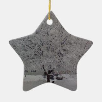 Snow Covered Tree In Maine Ceramic Star Decoration