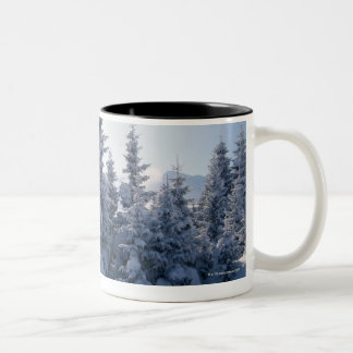 Snow-covered trees and mountains mugs