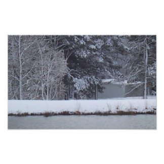 snow covered trees behind the pond photograph