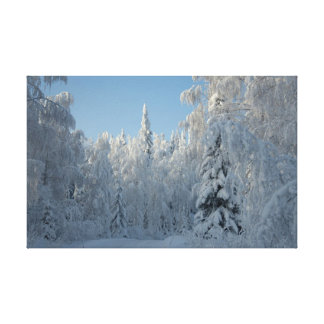 Snow covered trees gallery wrapped canvas
