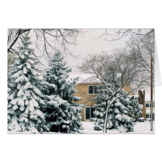 snow covered trees greeting card
