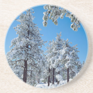 Snow-covered trees in the Laguna Mountains Drink Coaster