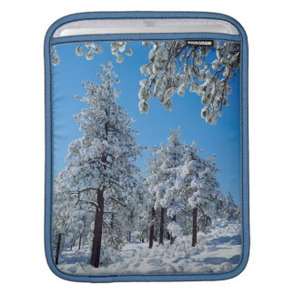 Snow-covered trees in the Laguna Mountains Sleeves For iPads