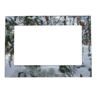 Snow Covered Trees Magnetic Frame