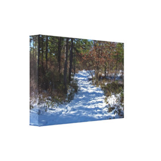 Snow Covered Woodland Path in Winter Canvas Prints