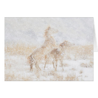 Snow Day for the Mustangs Horse Greeting Card
