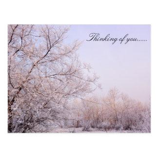 Snow Fall Postcard