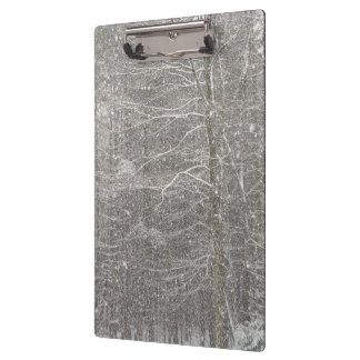 Snow Falling Clipboards