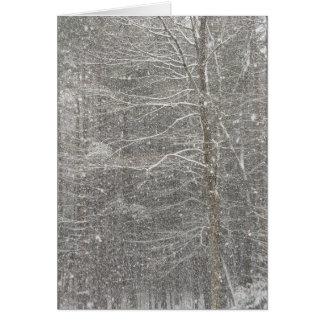 Snow Falling Greeting Card