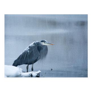 Snow falling on heron postcard