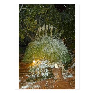 snow falling post card