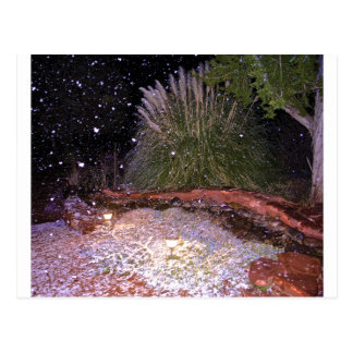 snow falling post card