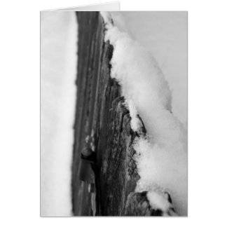 Snow Fence Card