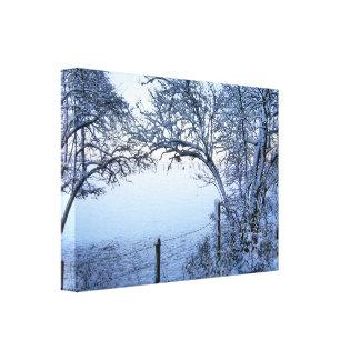 Snow Field Canvas Print