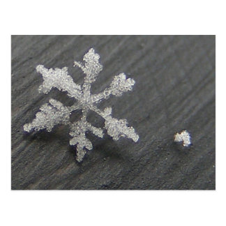 Snow Flake 44 ~ postcard