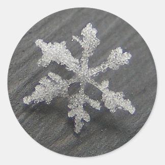 Snow Flake 44 ~ stickers