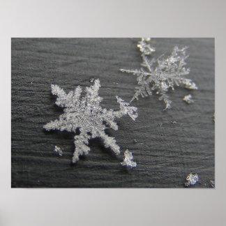 Snow Flake 45 ~ print