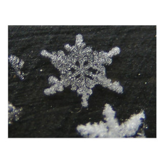 Snow Flake 56 ~ postcard