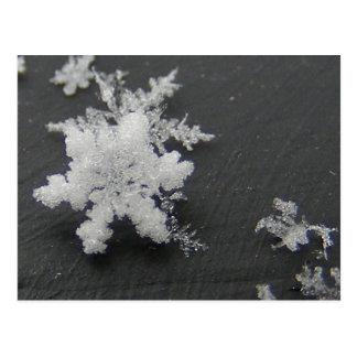 Snow Flake 73 ~ postcard