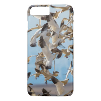 Snow Geese Fill The Sky After Feeding In Barley iPhone 7 Plus Case