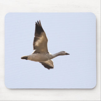 Snow Goose Mouse Pad