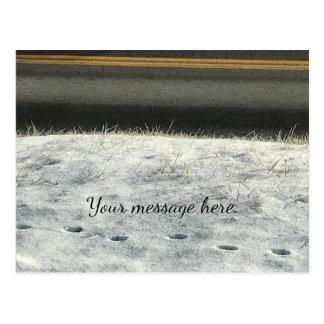 Snow Grass Foot Prints Winter Your Text Postcards