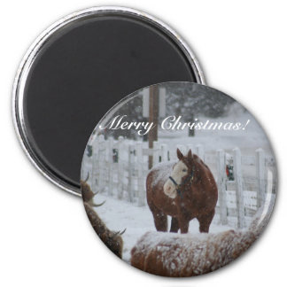 Snow Horse, Merry Christmas! Fridge Magnets