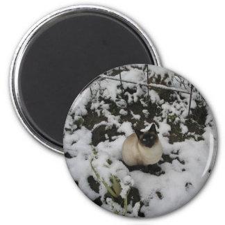 Snow Images, Snow Cat 6 Cm Round Magnet