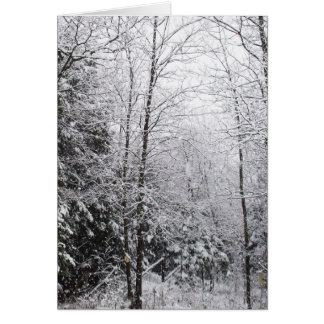 Snow is Falling Blank Card