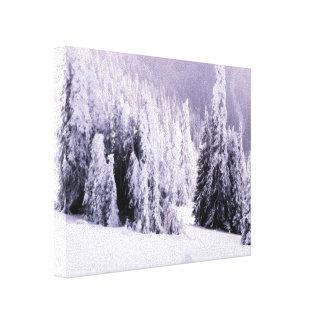 Snow laden gallery wrap canvas