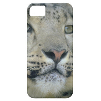 snow leopard barely there iPhone 5 case