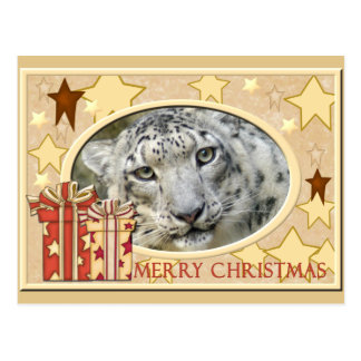 Snow Leopard-BCR-c-148 copy Postcard