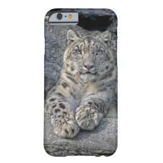 Snow Leopard Beauty (both paws in front) Barely There iPhone 6 Case