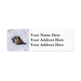 Snow Leopard Buried in Snow Return Address Label