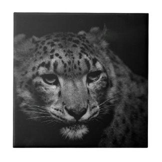 snow-leopard ceramic tile